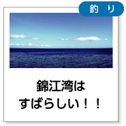 錦江湾はすばらしい!!